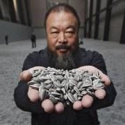κινέζος καλλιτεχνης-ηλιόσποροι από πορσελάνη/γκαλερί Τade