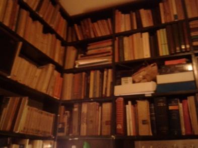 Τμήμα της βιβλιοθηκης του μικρού προσωπικού χώρου του