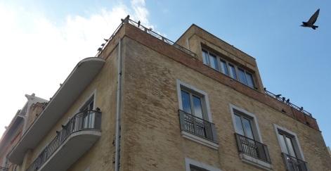 Το σπίτι Καστρινακη σήμερα, όπως ηταν και τοτε- ενα περήφανο πουλί ζυγιάζεται ψηλά...