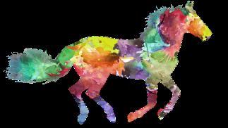 horse-3317004__340